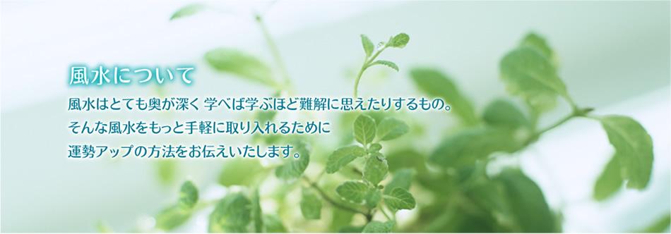 fuusui_top