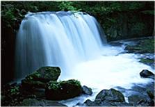 水による浄化